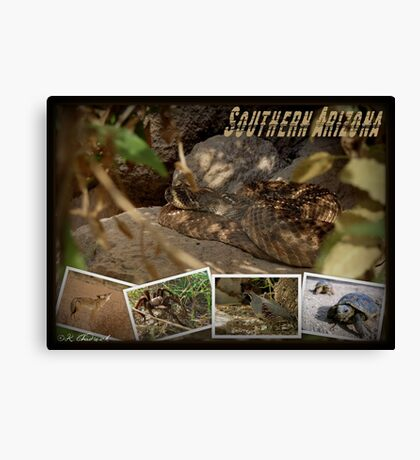 Southern AZ Critters Canvas Print