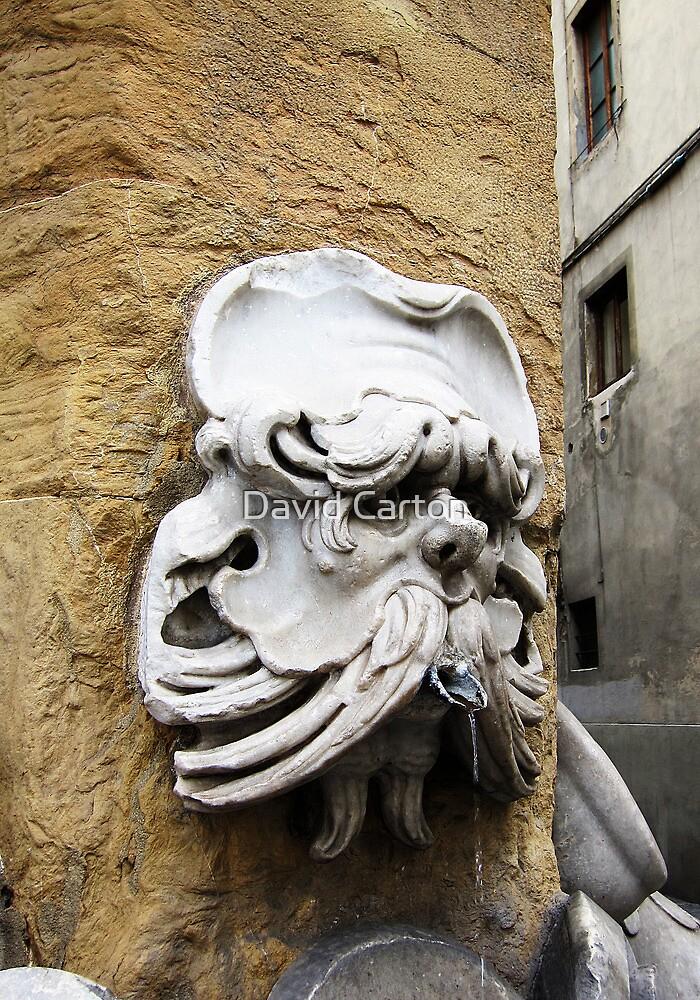 Street corner fountain, Florence, Italy by David Carton