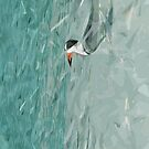 Black Skimmer on the Beach Abstract Impressionism by pjwuebker