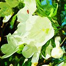 Fragrant Spring Apple Blossoms Abstract Impressionism by pjwuebker