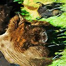 Wild American Bison With Calf Abstract Impressionism by pjwuebker
