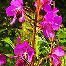 Purple Fireweed Alaska State Flower Abstract Impressionism by pjwuebker