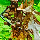 Pin Oak Leaves and Acorns in Fall Abstract Impressionism by pjwuebker