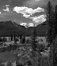 Rocky Mountain Brook by Bill Wetmore