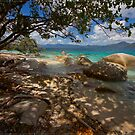 from Nudey Beach, Fitzroy Island by Chris Cohen