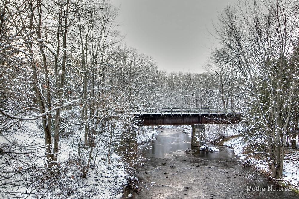 Derelict Railroad Bridge - Green Lane Pennsylvania USA by MotherNature2