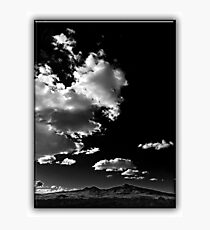 ©HCS Walk On The Wild Side LRT Monochromatic F Photographic Print