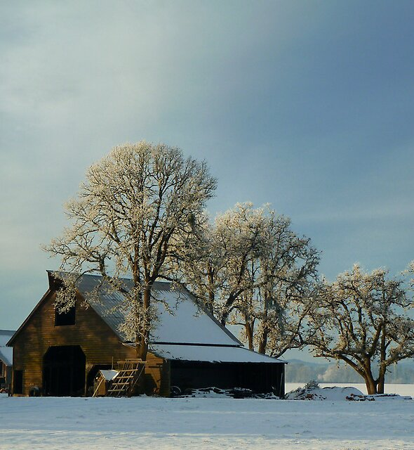 Another Day On The Farm ~ Snow ~ by Charles & Patricia   Harkins ~ Picture Oregon
