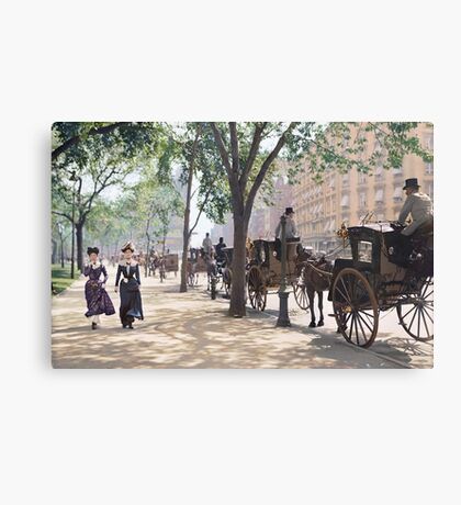 Cab Stand at Madison Square Garden, 1900 Canvas Print