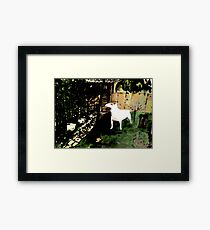 BULL TERRIER Framed Print
