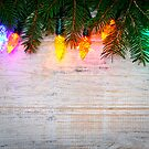 Christmas background with lights on branches by Elena Elisseeva