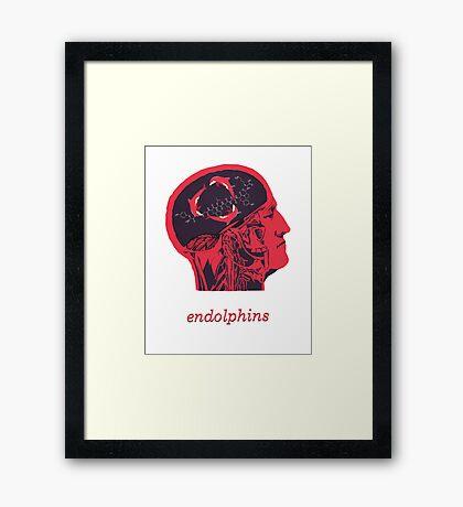 Endolphins Framed Print