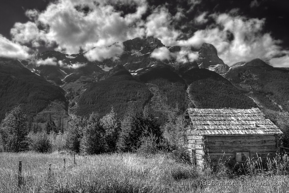 Trapper Cabin by James Anderson