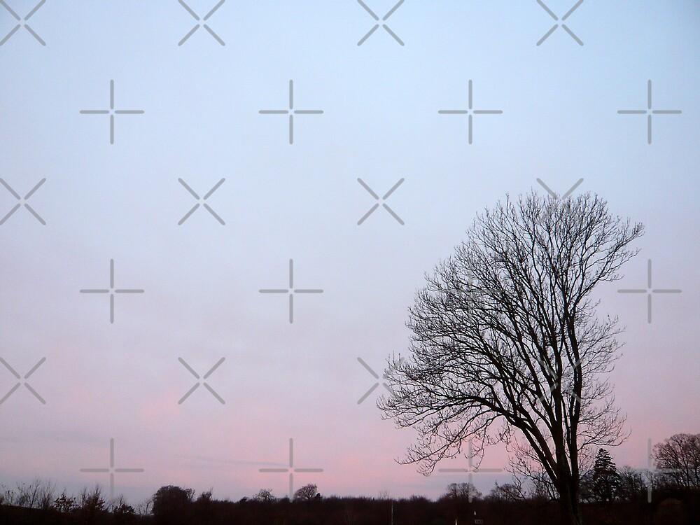 Early Morning Sunrise in Denmark by Hekla Hekla