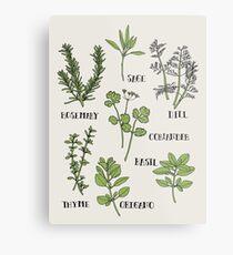 Herb Metal Print