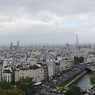 View from the top of Notre Dame by TigerOPC