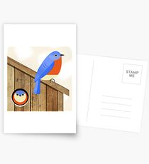 blue bird house Postcards