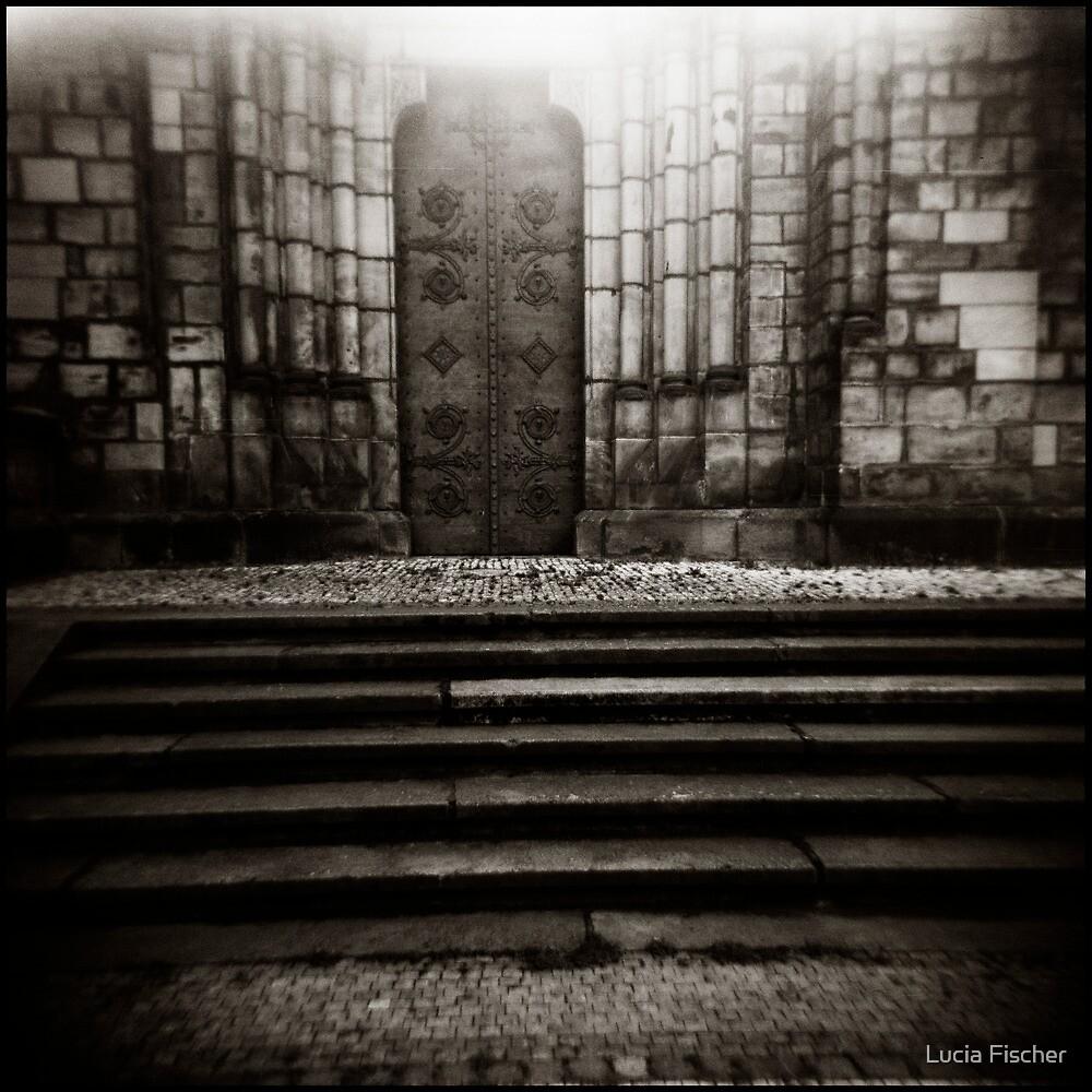 { luminosity } by Lucia Fischer
