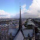 Autum in Paris by TigerOPC