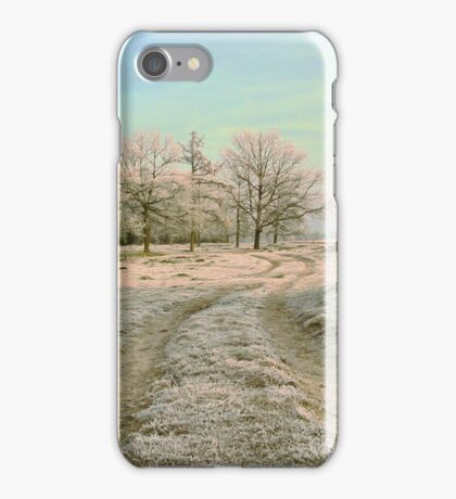 A Country Road in Winter iPhone Case/Skin