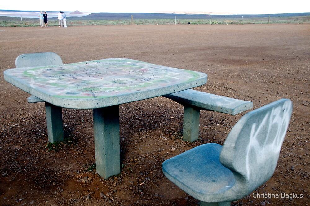 Picnic Table by Christina Backus