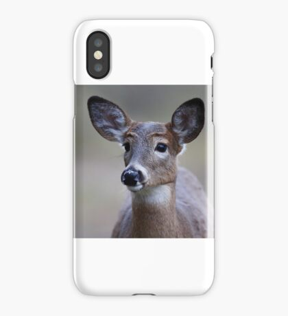 So forlorn - White-tailed Deer iPhone Case/Skin
