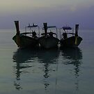 Three Longtails by Paige