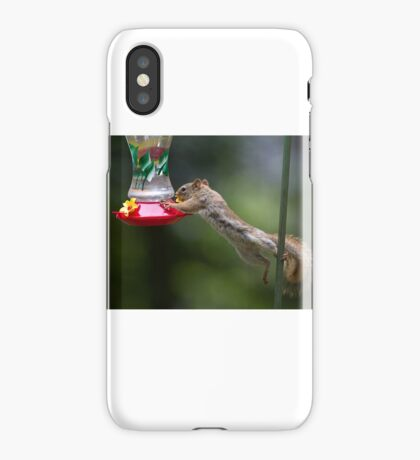 Feet don't fail me now! Red Squirrel iPhone Case/Skin