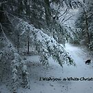 Dreaming of a White Christmas by ienemien