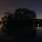 Duck Island, Greenlake with Christmas Tree Twilight by Ian Phares