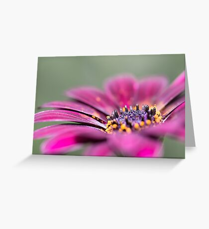 Sunny Bloom Greeting Card