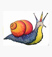 Rainbow Snail-icorn Photographic Print