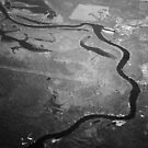 Sister River  by Allison  Flores