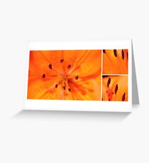 untitled xx Greeting Card