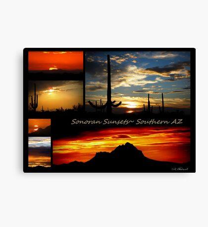 Sonora Sunsets~ Southern AZ Canvas Print