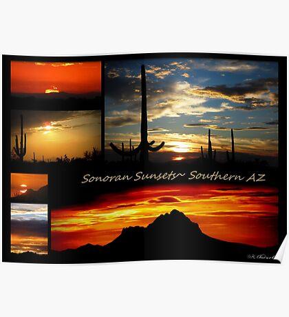 Sonora Sunsets~ Southern AZ Poster