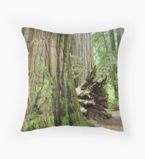 REDWOOD Trees Art Prints Redwoods Forest gifts Throw Pillow