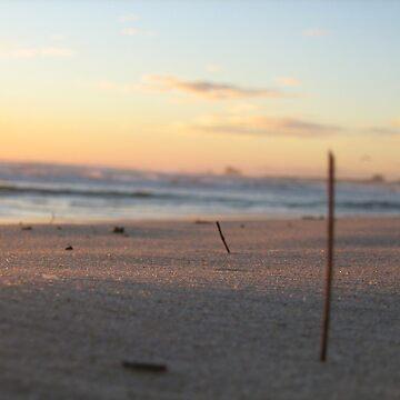 Dawn on Anzac Day  by pookychoo