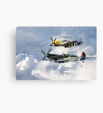 Flying Brothers Canvas Print