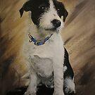 Puppy with no name by Jan Szymczuk
