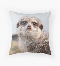 Eyes Like Limpid Pools Throw Pillow