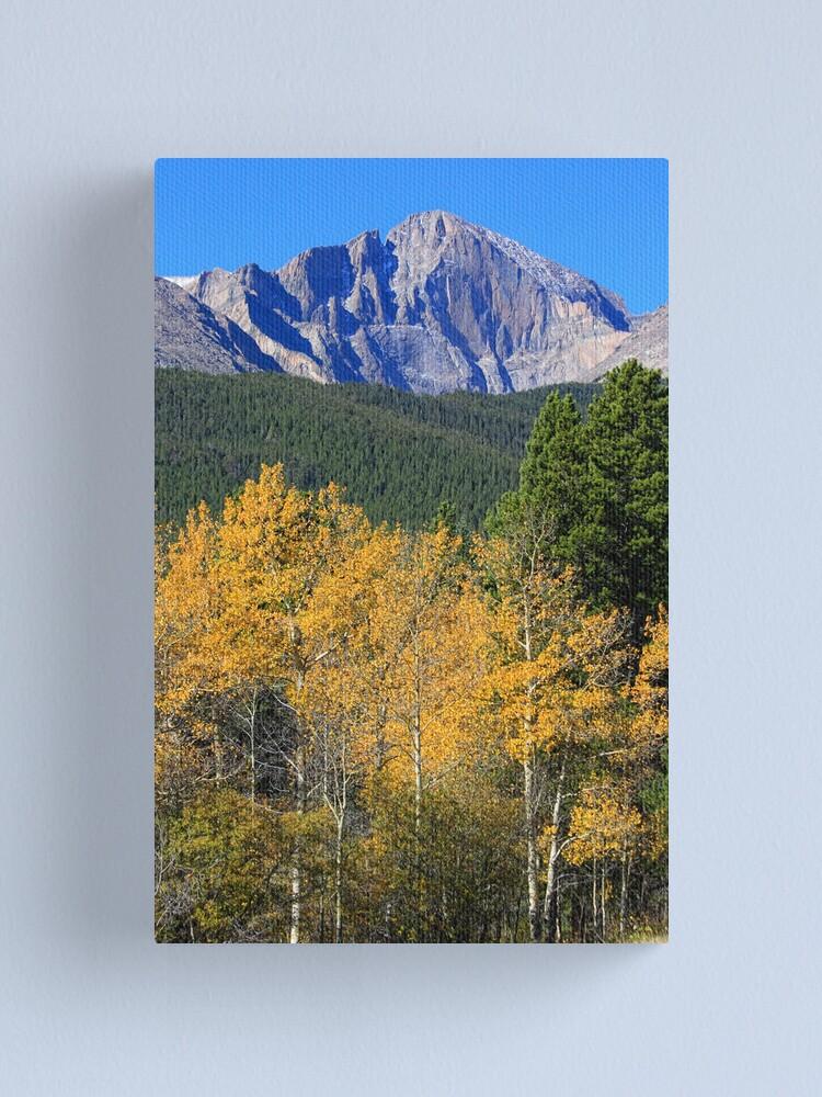 Alternate view of Autumn Aspens and Longs Peak Canvas Print