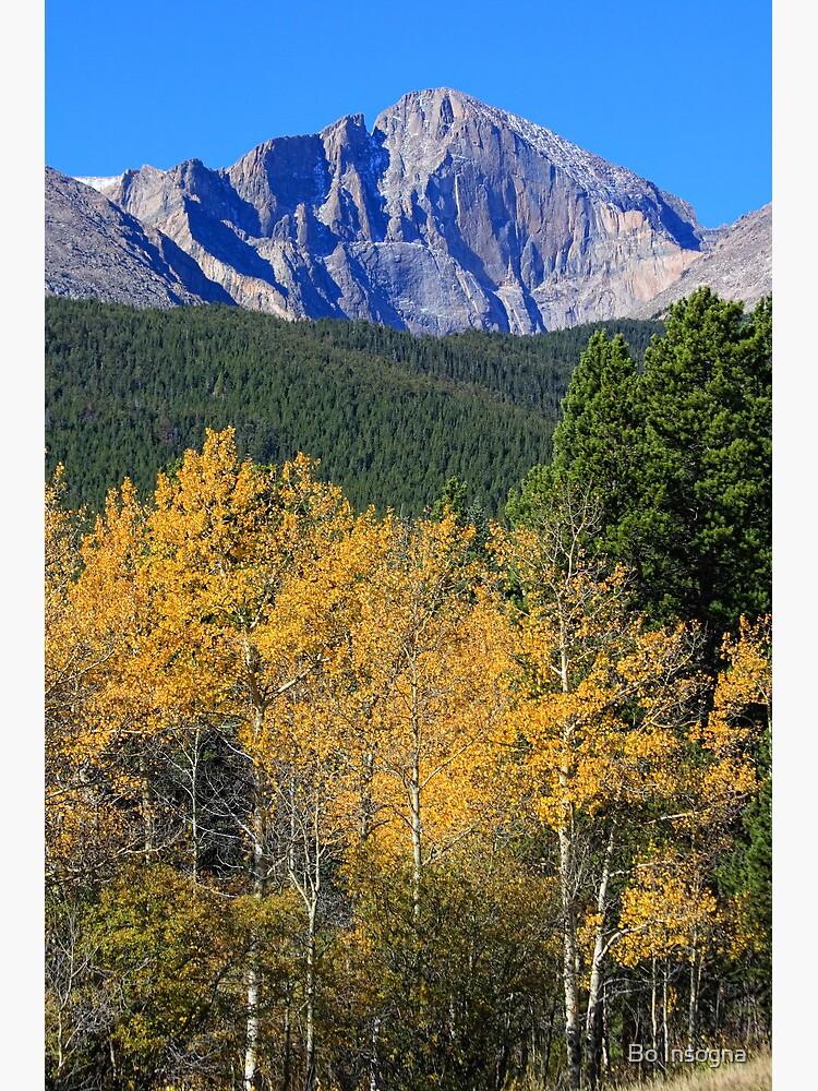 Autumn Aspens and Longs Peak by mrbo