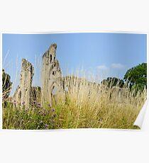 Marjoram garden, Glastonbury Abbey Poster