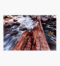 Bells Rapids - Swan Valley Photographic Print