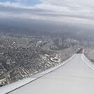 Brisbane from the Air by NinaJoan