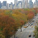 Colorful central Park November 2013 by Danny  Daly