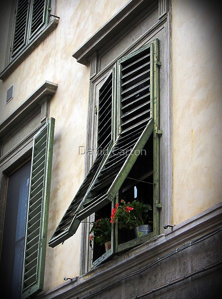 Shuttered window, Florence, Italy by David Carton