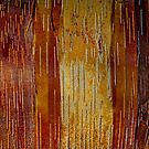 Nature's Abstracts by Marilyn Cornwell