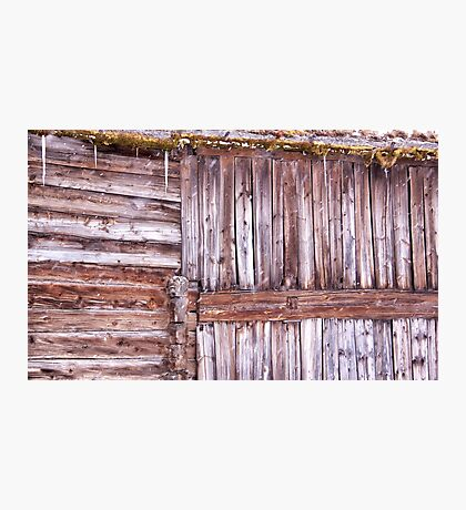 Snowy wood Photographic Print